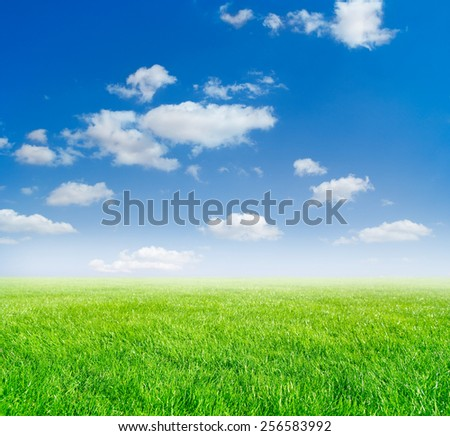 sky and grass landscape background - stock photo