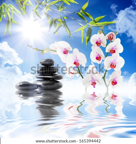 sky, sun, white orchids, bamboo on water - stock photo