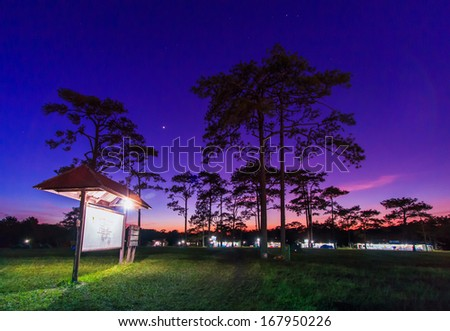 Sky with stars in night, landscape at Phukradung National Park,Asia Thailand - stock photo