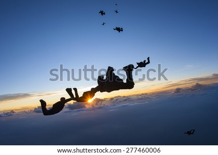 Skydiving formation at sunset - stock photo