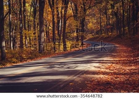 Skyline Drive in Gold, Shenandoah National Park - stock photo