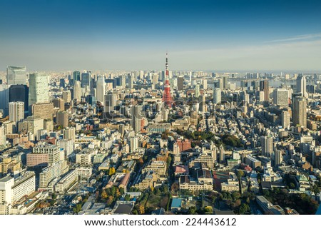 Skyline of Tokyo Cityscape with Tokyo Tower, Japan - stock photo