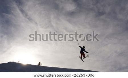slalom fun - stock photo