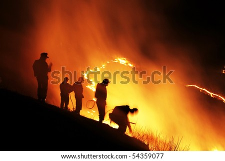 Slash and burn - stock photo