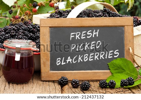 Slate blackboard with the words: Fresh Picked Blackberries, in front of ripe blackberries and a on a rustic wooden table - stock photo