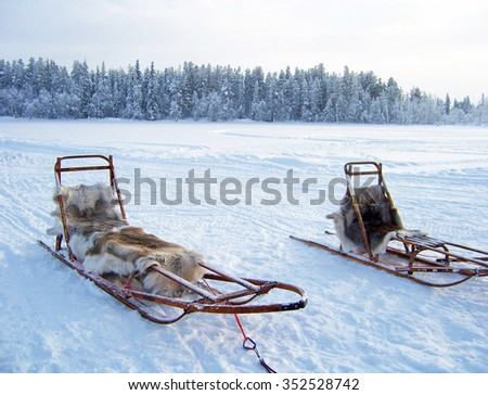 sledges for reindeer rides