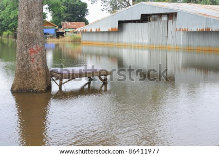 Sleep wait.Bed under the trees and flooding the area. - stock photo