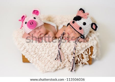 Sleeping fraternal twin newborn baby girls wearing crocheted pig and cow hats. - stock photo