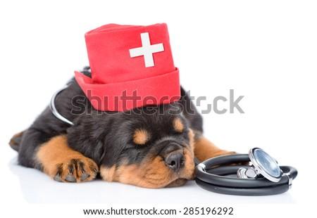 Sleeping rottweiler puppy dog wearing nurses medical hat and stethoscope on his neck. isolated on white background - stock photo