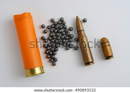 sleeve and shot hunting ammunition
