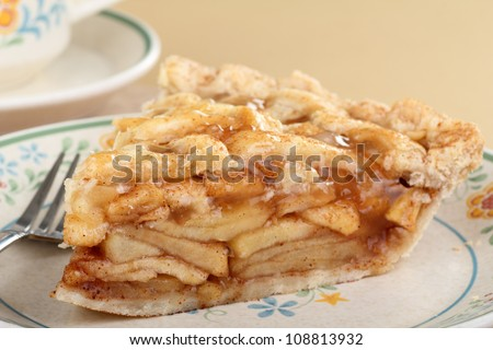 Slice of cinnamon apple pie on a plate - stock photo