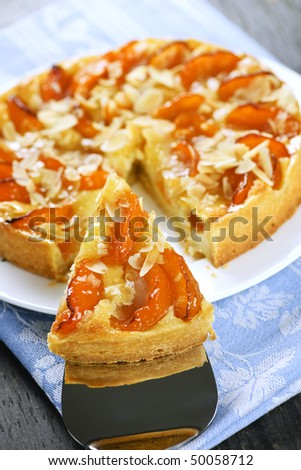 Slice of fresh baked apricot and almond pie dessert - stock photo