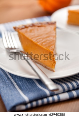 Slice of Freshly Baked Pumpkin Pie - stock photo