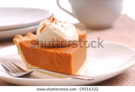 Slice of freshly made pumpkin pie with whipped cream and cinnamon - stock photo