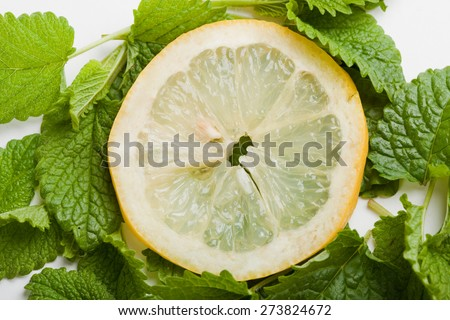 slice of lemon on lemon balm leaf, white background, close up - stock photo