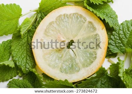 slice of lemon on lemon balm leaf, white background, close up - stock photo