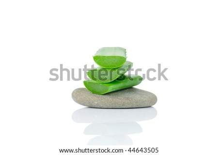 Sliced aloe leaves on the stone isolated on white background - stock photo