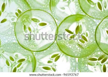 Sliced cucumbers in water isolated on a white background. - stock photo