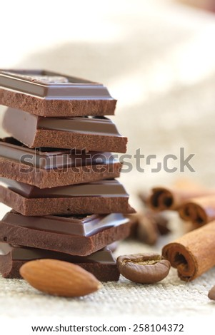 Slices of dark chocolate and spices - stock photo