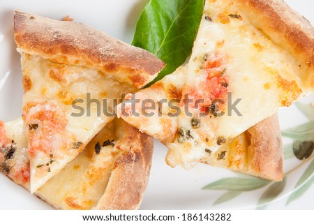 Slices of delicious freshly baked cheesy Italian pizza with a thick crust and a topping of mozzarella, tomato and spicy seasoning served on a plate - stock photo