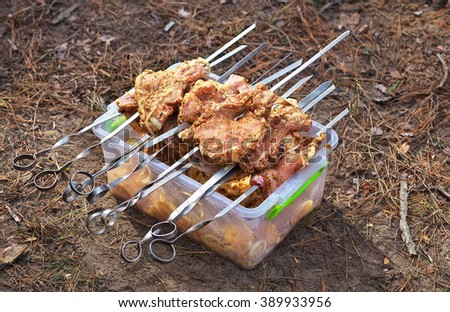 Slices of pork skewered on a skewers on container with marinade. Preparation for Cooking or Grill.Camping - stock photo