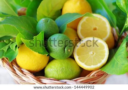 Slices of ripe lemons on basket - stock photo