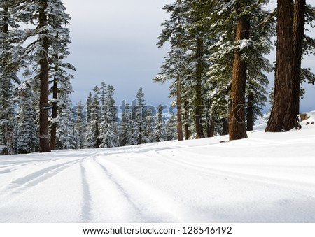 Slopes with the ski marks on the snow. - stock photo