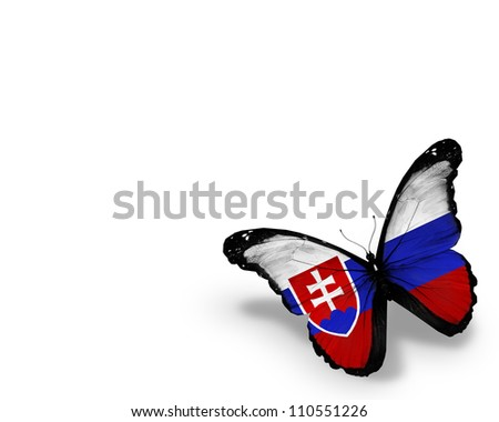Slovakian flag butterfly, isolated on white background - stock photo