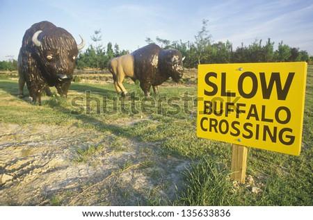 Slow Buffalo Crossing with plastic buffalo statues in Indiana - stock photo