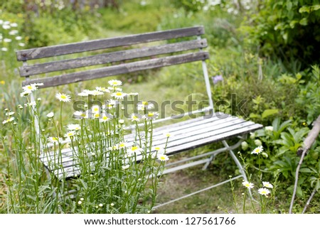 Slow Life - stock photo