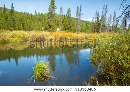 Slow moving river in beautiful landscape, in Yellowstone National Park. - stock photo