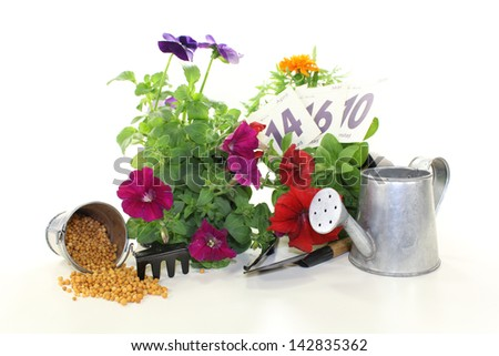 slow-release Fertilizer with flowers, calendar sheets, watering can and garden tools on a light background