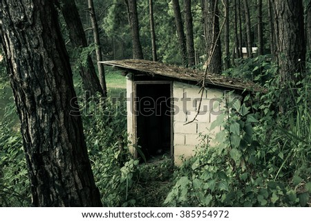 Small abandoned house in forest / Look so scary - stock photo