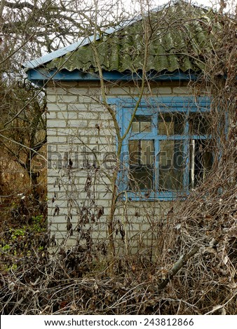 small abandoned house surrounded by leafless trees and dry lianas - stock photo