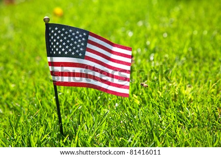 Small american flag on the green grass - stock photo