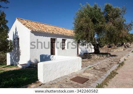 small andalusian typical white house with olive tree - stock photo