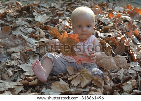 Small baby playing in autumn leaves in sunny weather - stock photo