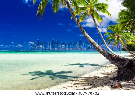 Small beach with palm trees over tropical water at Rarotonga, Cook Islands - stock photo
