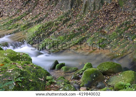Small beautiful brook stream river in a green lush forest nature background - stock photo