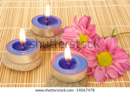 Small blue candles and flower in the spa - stock photo