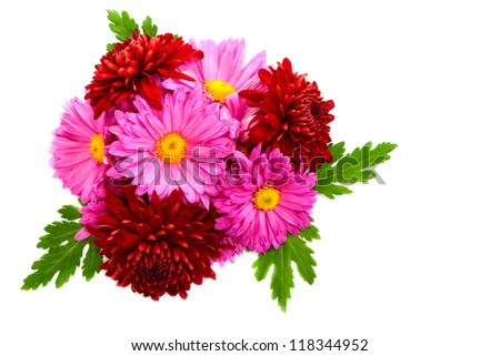 Small bouquet of beautiful lush chrysanthemums on a white background.