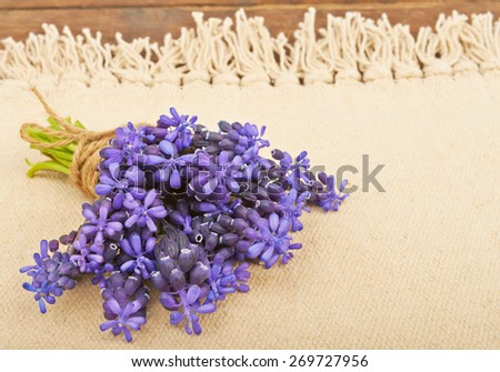 Small bouquet of hyacinth on a fabric canvas background - stock photo