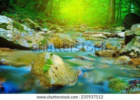 small brook in a mountain forest - stock photo