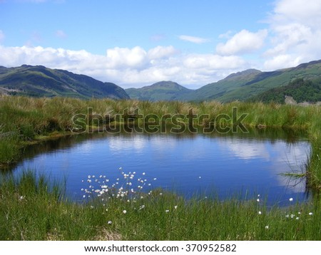 Small calm pond, in the middle of a grassy meadow featuring a few wild flowers. Set against a backdrop of mountains and a blue sky with some light cloud. Taken in Scotland.