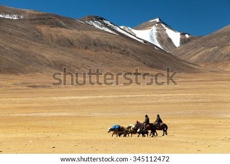 small caravan going on plane in Rupshu valley near Tso Moriri lake, great himalayan range, Ladakh, Jammu and Kashmir, India - stock photo