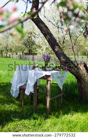Small coffee table and a wooden chair under an apple tree in green summer garden - stock photo