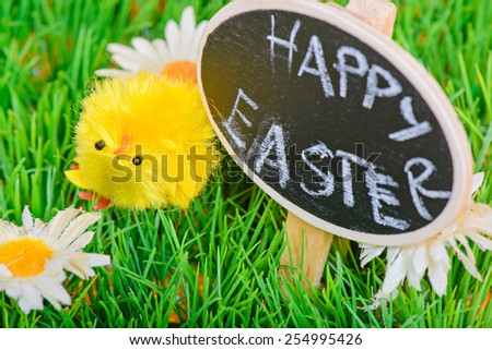 Small easter chicken on the green grass and black board with copy-space - stock photo