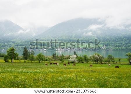 Small farm near Wolfgangsee in Alps mountains, Austria - stock photo