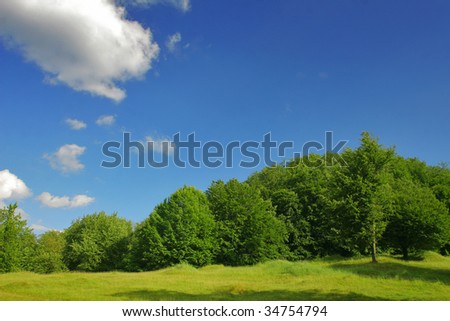 Small forest edge with field - stock photo