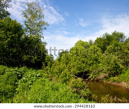 small forest river in dense thickets - stock photo